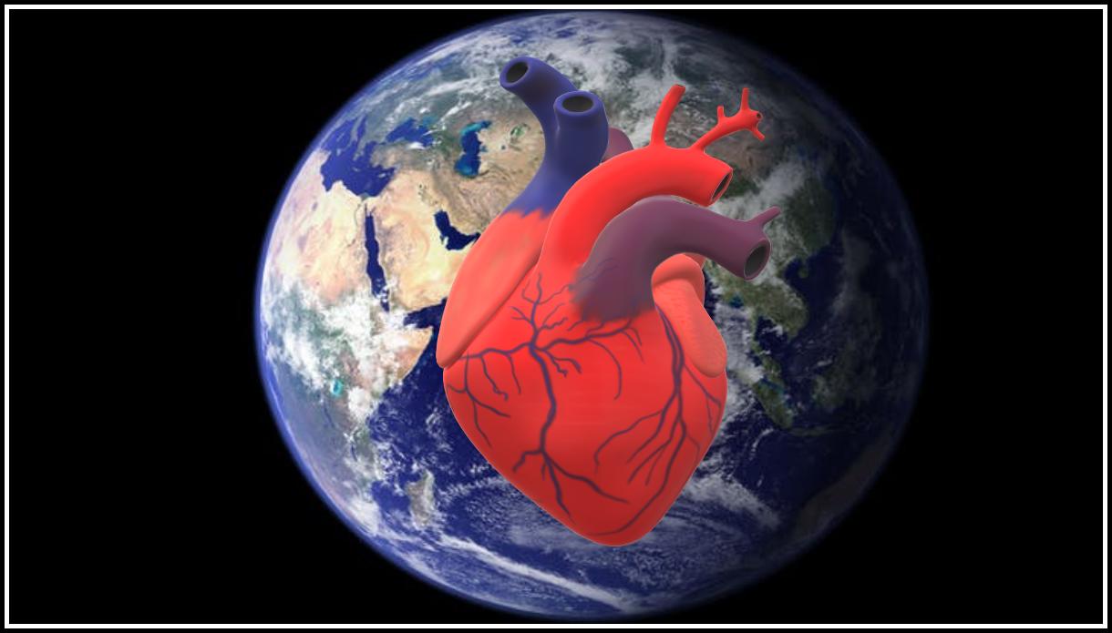 Земля это живой организм: у нее есть пульс