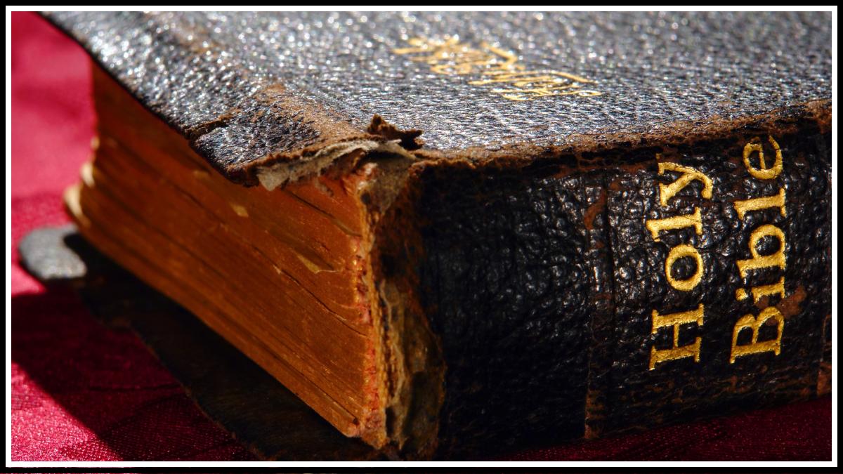 Библия: топ 17 самых удивительных и странных историй