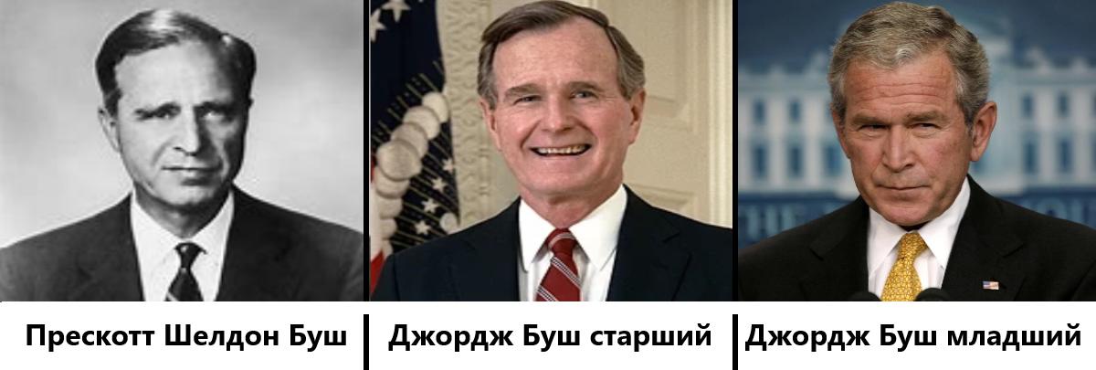 История семьи Буш